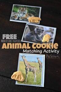 Montessori-Inspired-Animal-Cookie-Activity