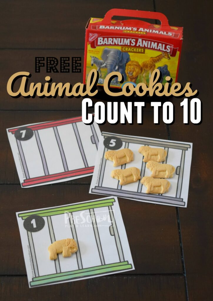 FREE Animal Cookies Count to 10 Activity. This is such a fun math activity to help toddler, preschool, and kindergarten age kids practice counting while having fun with animals #preschool #kindergarten #mathactivity