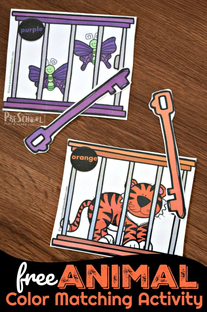 FREE Animal Color Matching Activity is such a cute math activity for preschoolers to go along with a zoo theme.
