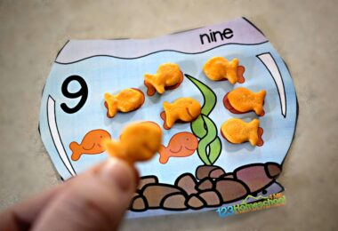 Use goldfish to practice one to one correspondence with toddler, preschool, and prek age kids.