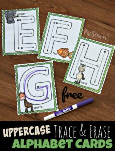 FREE Printable Uppercase Trace and Erase Alphabet Cards with Animals from A to Z