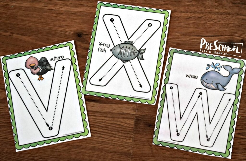 V is for vulture, X is for xray fish, and w hale alphabet flashcards