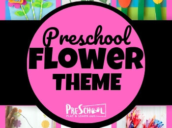 Flower Theme for Preschoolers - lots of fun clever flower printables and flower activities to learn math, literacy, and more this spring! #preschool #flowertheme #springtheme