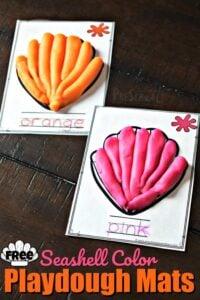 seashell color matching summer activity for preschooler