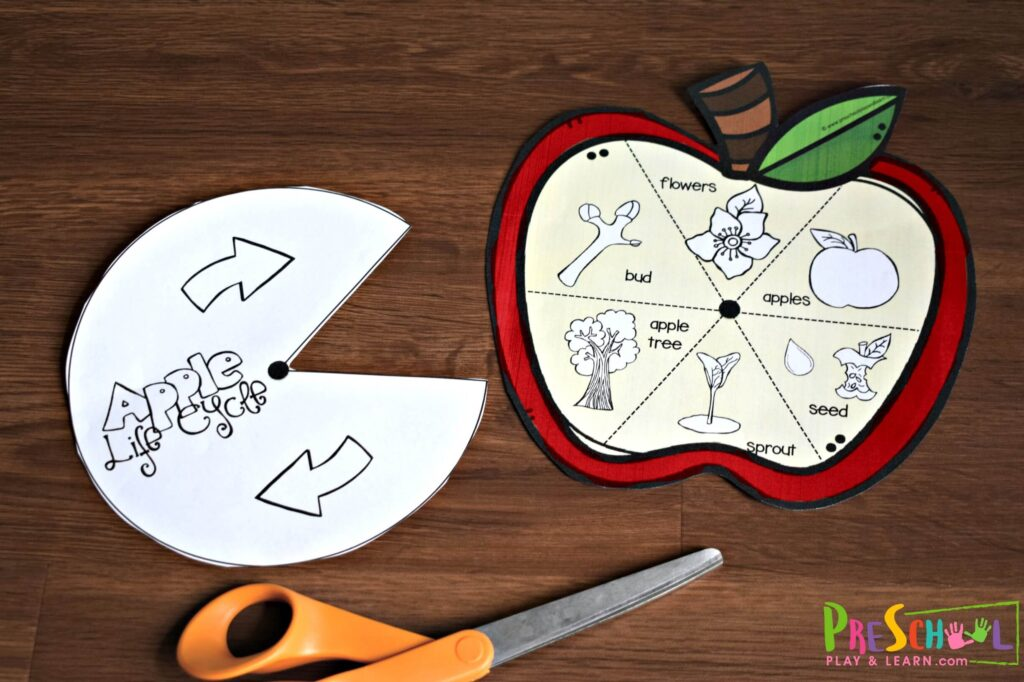 Cut out the apple printables - both the apple and the pacman spinner