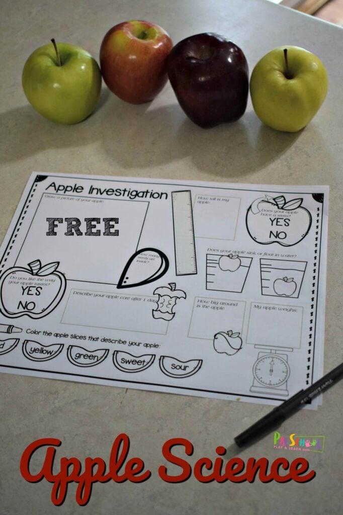Fun apple science for preschoolers and kindergartners