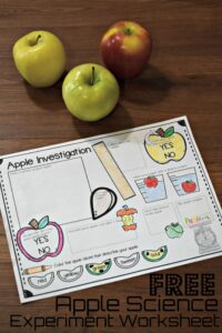 FREE Apple Science Experiment Worksheet - free science printables in this easy science experiments for preschool, prek, kindergarten, and first grade kids. This is perfect for back to school, fall, and September! #preschool #scienceisfun #apples