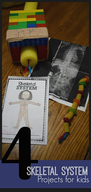 4 EPIC Skeletal System Projects for KIds