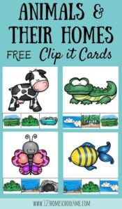 animal home clip cards