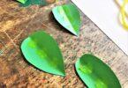 Pea Pod Craft for Kids