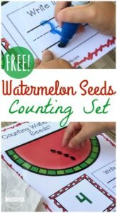 Watermelon Seed Counting Set
