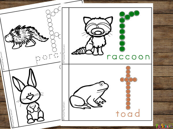 nocturnal animals for preschoolers is a no prep science activity for kids