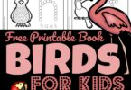 Kids will have fun learning about a variety of birds with this fun and free My Books of Birds Reader. This do a dot printables is such a fun, hands on way for toddler, preschool, pre k, and kindergarten age students to learn about birds for preschoolers.