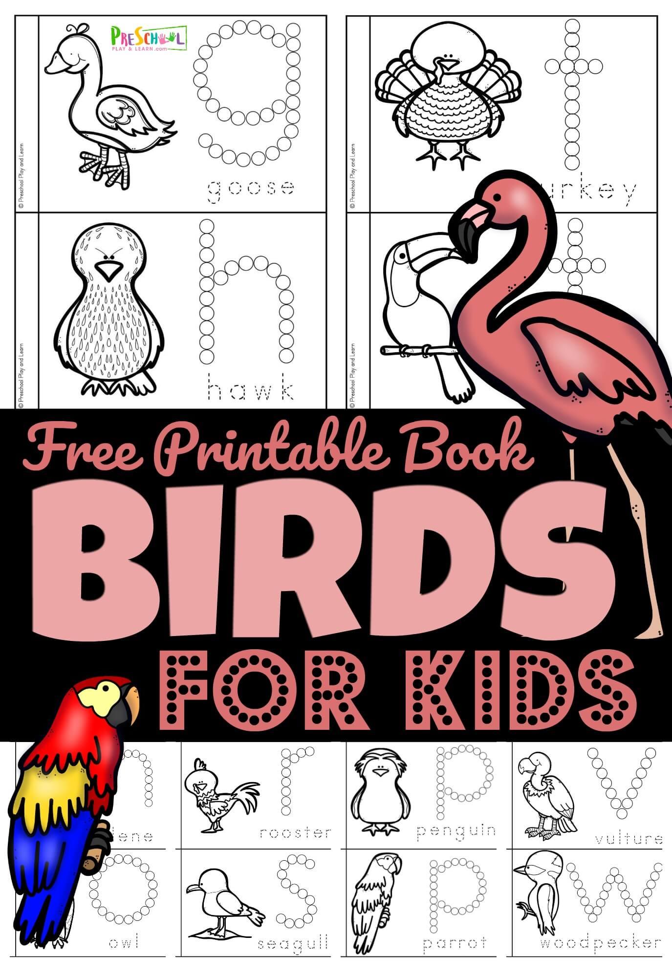 Free Birds For Preschoolers Printable Book