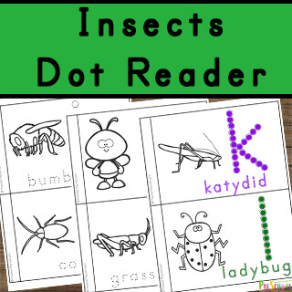 Insects for Kids reader