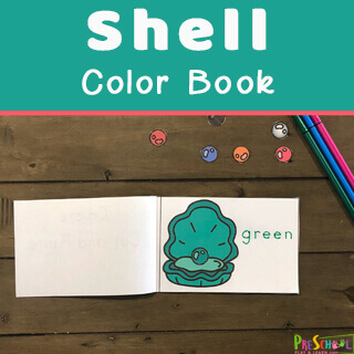 Learning-Colors-with-Shells-2