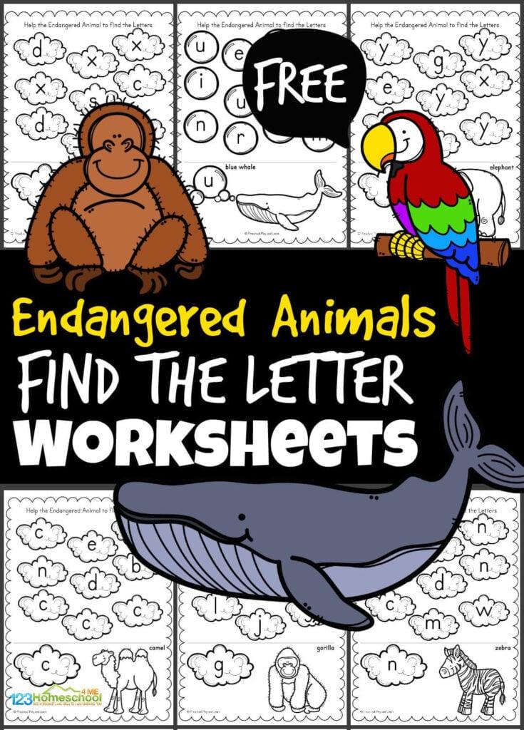 free letter find worksheets for preschool, pre k, kindergarten, and grade 1 students