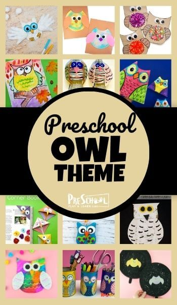 Study owls with your preschooler using this Owl Preschool Theme! Your kids will love these engaging activities, printables, and crafts.