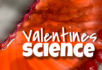 This simplevalentine's day science project is super quick and easy and only requires some skittles to learn about how substances can dissolve and diffuse. Thisvalentines day activitiescreates a WOW effect for young learners to help them get excited about science - exploring cause and effect, making predictions, and gaining an attitude of wonder and curiosity about things around them. Try thisvalentine's day activities with toddler, preschool, pre-k, kindergarten, and first grade students during February as a fun Valentines Day theme project.