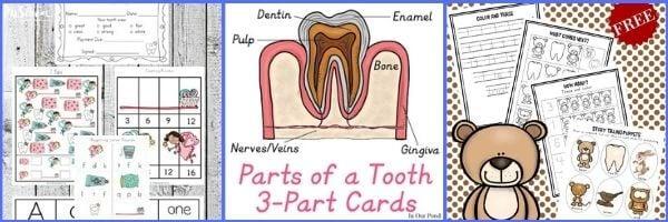 Dentist Printables for Preschoolers