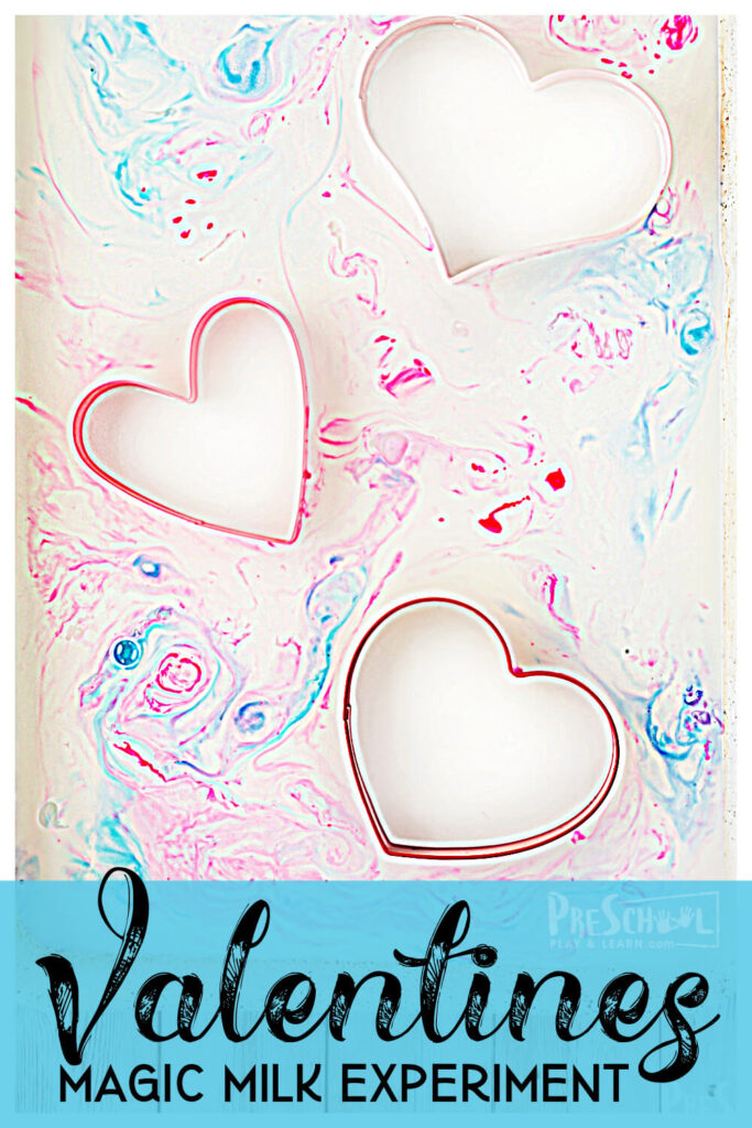 Looking for a pretty and simplevalentines day science for February? Your toddler, preschool, pre-k, and kindergarten age chid will have fun with this easymilk science experiment. All you need is milk, dish soap, food coloring, and q-tips to try this fun and exciting valentines day activity!