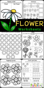 Make learning fun this spring and summer with these super cute flower worksheets. These flower worksheets for preschoolers include a variety of math and literacy skills with a fun flower theme for toddler, preschool, pre-k, and kindergarten age students. Simply print pdf file with preschool spring worksheetsand you are ready to play and learn with aFlower Activities for Preschool.