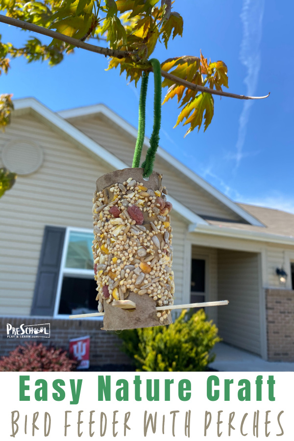 Simple DIY Bird Feeder for Kids is a fun, easy-to-make bird feeder craft to make from a Toilet Paper Roll and peanut butter this summer!