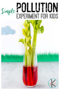 Earth Day Science celery experiment to demonstrate water pollution
