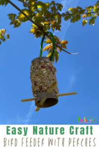 Do you need an easy nature craft for your kids to do this spring or summer? This simple DIY Bird Feeder for Kids is a fun, easy-to-make bird feeder craft and a great way to segway into talking about nature, the life cycle of a bird or just to have a simple conversation about wildlife near your home. My daughter loved making this Toilet Paper Roll Bird Feeder and it was fun to watch her excitement as it came together. Try thispeanut butter bird feeder with toddler, preschool, pre-k, kindergarten, first grade, and 2nd graders.