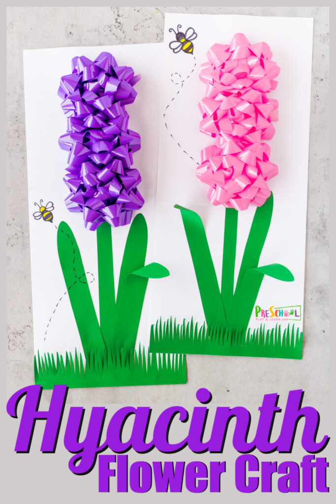 After a long, dreary winter nothing says spring like pretty blooming flower bulbs! One of my favorite spring flowers are hyacinth because they are not only pretty, but they smell amazing too! This prettyhyacinth craft is not only a beautifulflower craft, but it is SUPER easy too! Thisflower craft for preschool, toddler, pre-k, and kindergarten uses a couple common materials and gift bows! This lovelyspring craft for preschoolers is bound to be one of your new favoriteflower activities.