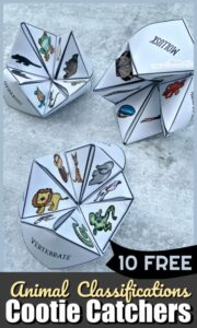 Animal-Classifications-for-Kids-Cootie-Catchers