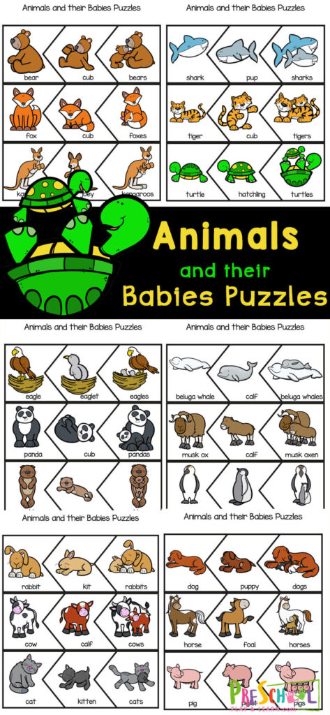 Children will have fun learning about a variety of Animals with their Babies Names with this animal printable! Simply print the baby animals names with pictures to learn about polar, domesticated, grassland and more animals and their babies with these fun and free Animal Puzzles. Simply print theanimals with their babies tolearn about animals for toddlers, preschoolers, kindergartners, and grade 1 students.