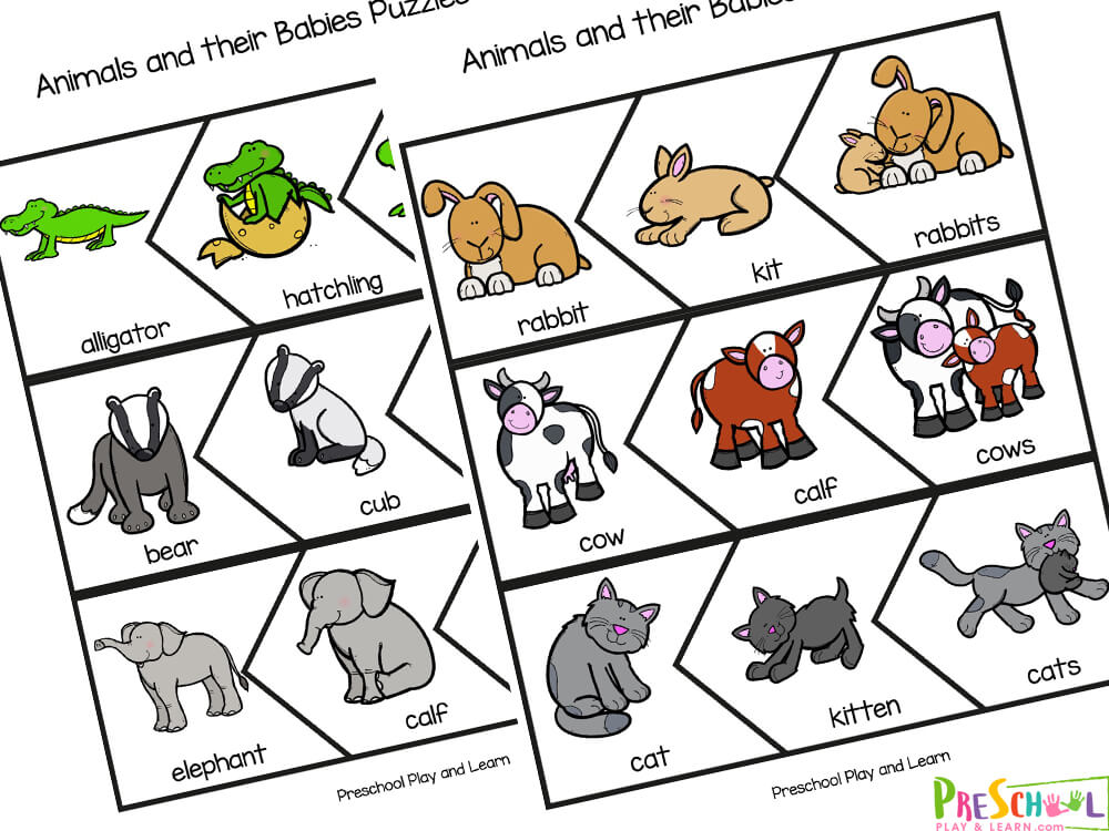 Learn about animals for toddlers