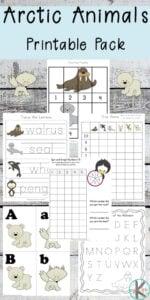 arctic animals kindergarten worksheets