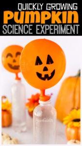 balloon Pumpkin Science Experiment