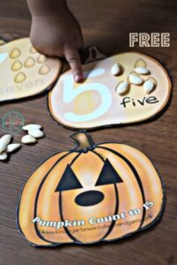 pumpkin math for preschoolers